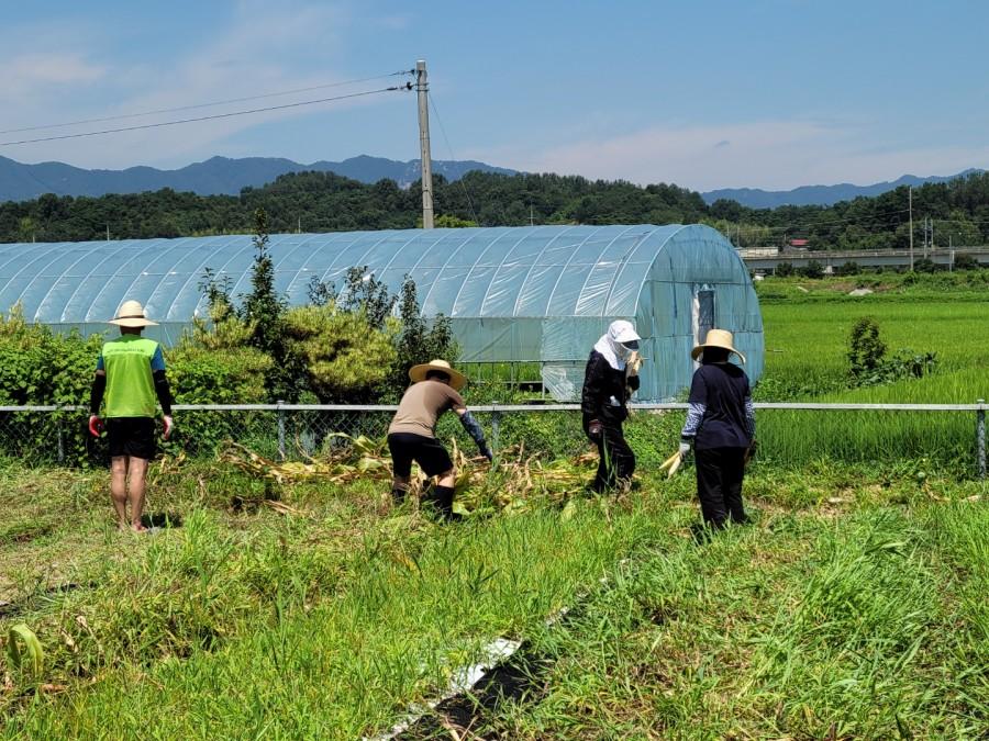 농기계사용/재배기술